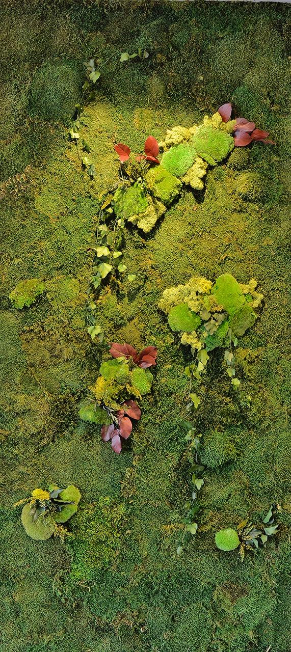 jardín vertical Davinia